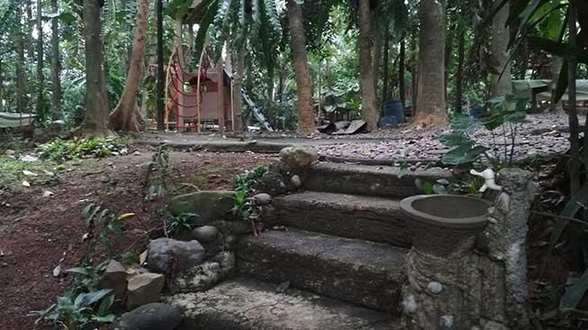 Wisata Alam Kampung 99 Pepohonan